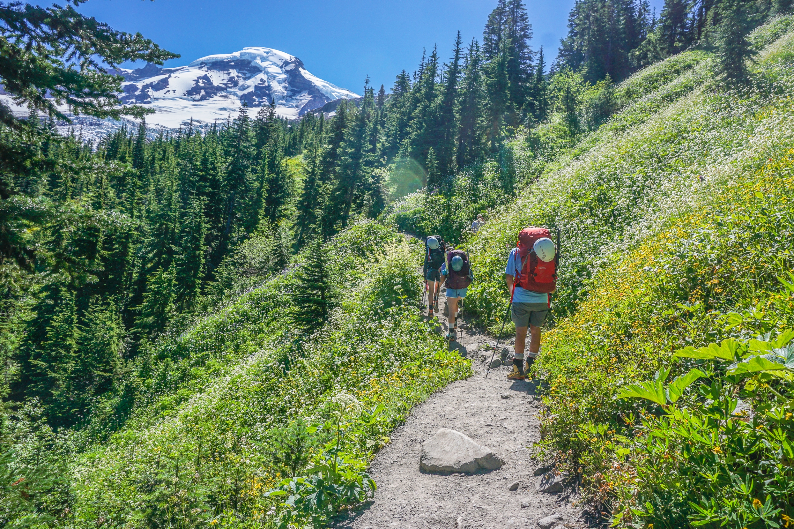 Learning how to pack for a mountaineering trip is important because a lighter pack is easier to carry.Going mountaineering. Wildflowers line the trail on the approach to Mt Baker.